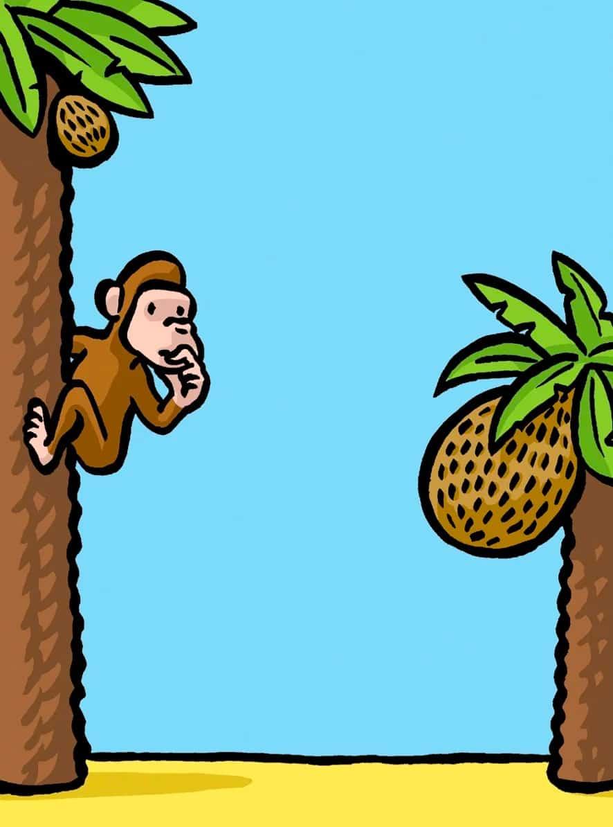 Monkey Sunk Cost Fallacy